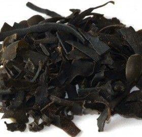 Fucus, Alga (Fucus Vesiculosus). herbolario La Trementina