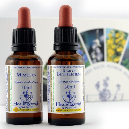 Kit Completo 40 Flores 30ml. Healing Herbs