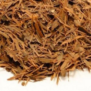Pau d´arco / Lapacho, Planta Trit. (Handroanthus serratifolius)